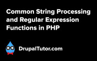 Common String Processing and Regular Expression Functions
