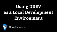 Using DDev as a Local Development Environment